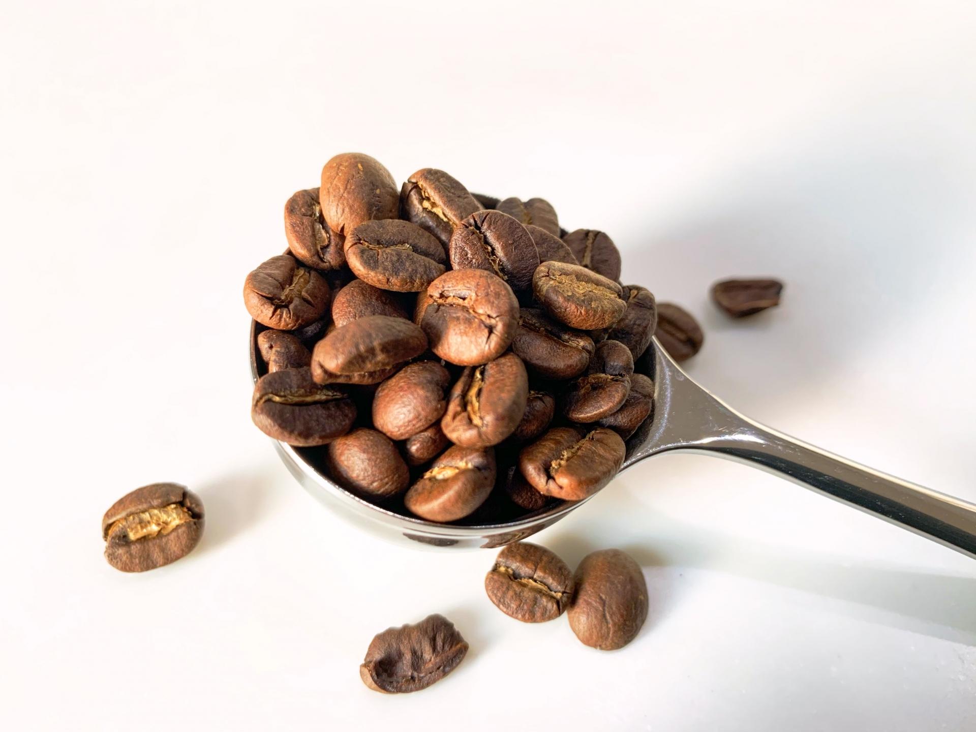 【コーヒーの品種一覧】品種を知るとコーヒーがもっと楽しくなる!