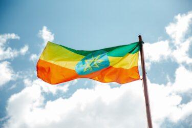 エチオピアのコーヒーについて【特徴をざっくり解説】初心者のためのコーヒー講座